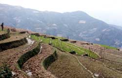 Terracing Erosion Control California